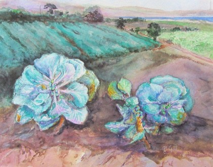 Watercolor, 16 x 20. This painting was done at harvest near Moss Landing at Ocean Mist Farms.